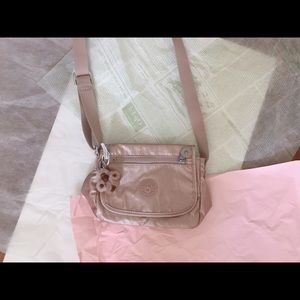 Metallic Crossbody Mini Bag
